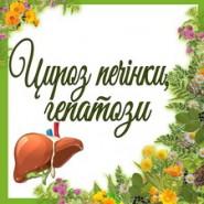 Цироз печінки, гепатози (5)