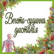 Вегето-судинна дистонія (4)