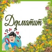 Дерматит (4)