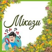 Мікози (3)
